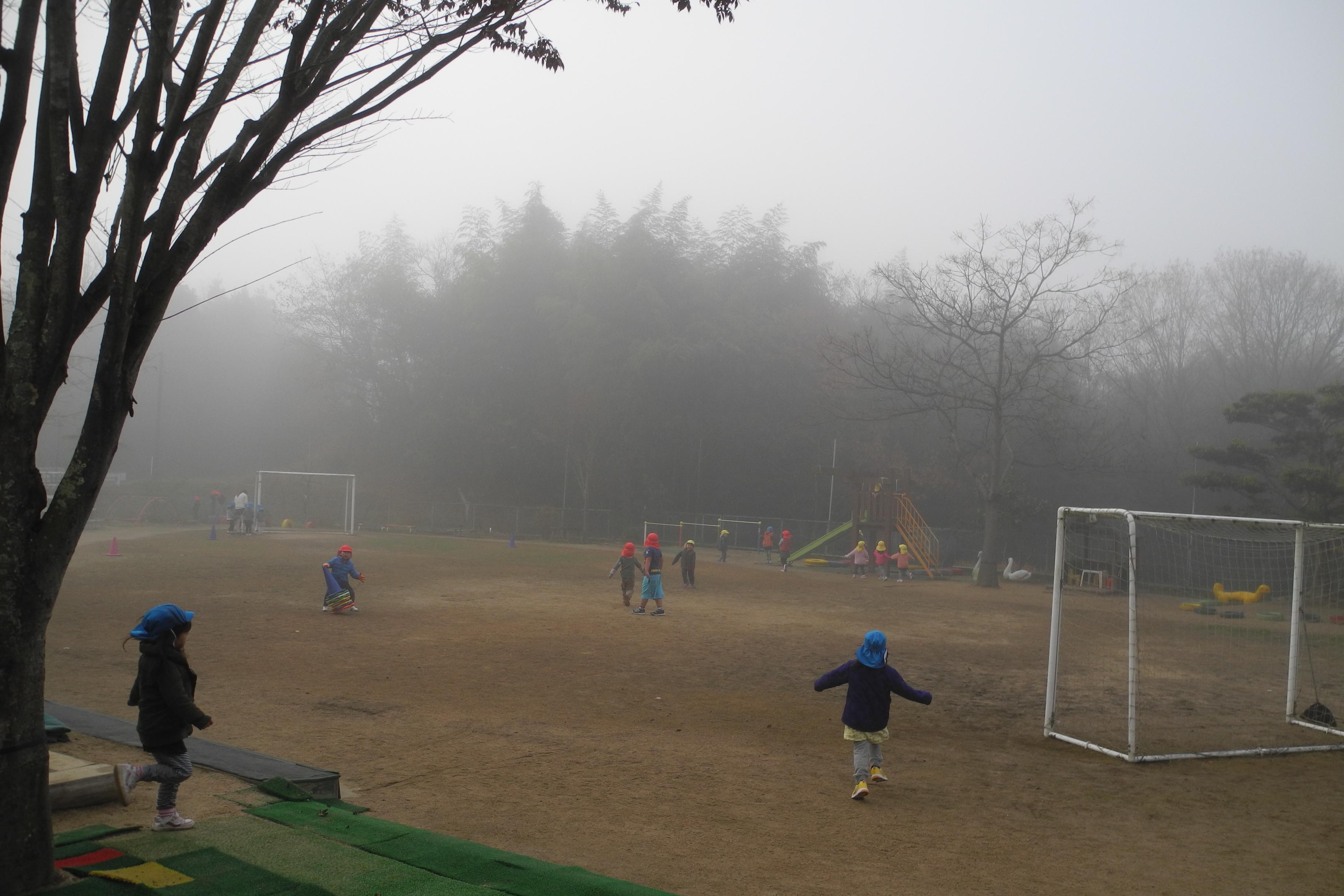 霧が深い朝